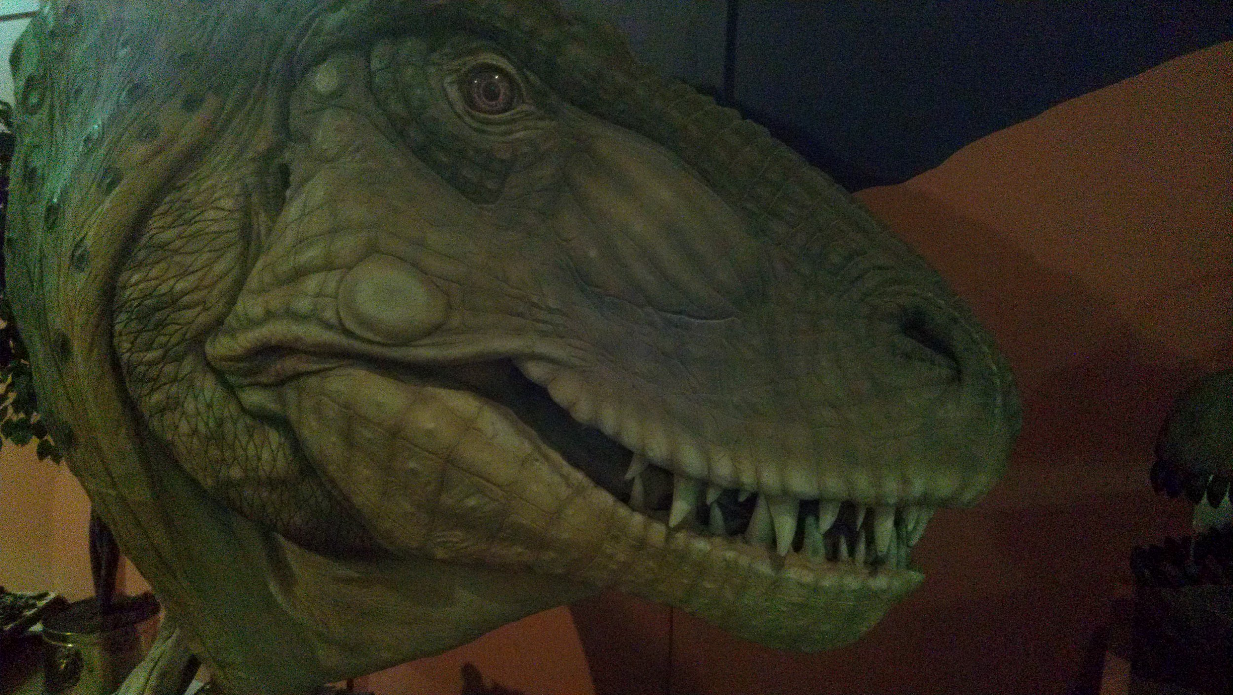 Dinosaur Journey in Fruita with Museums of Western Colorado